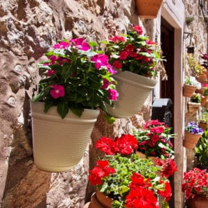 Large Wall Planter 05
